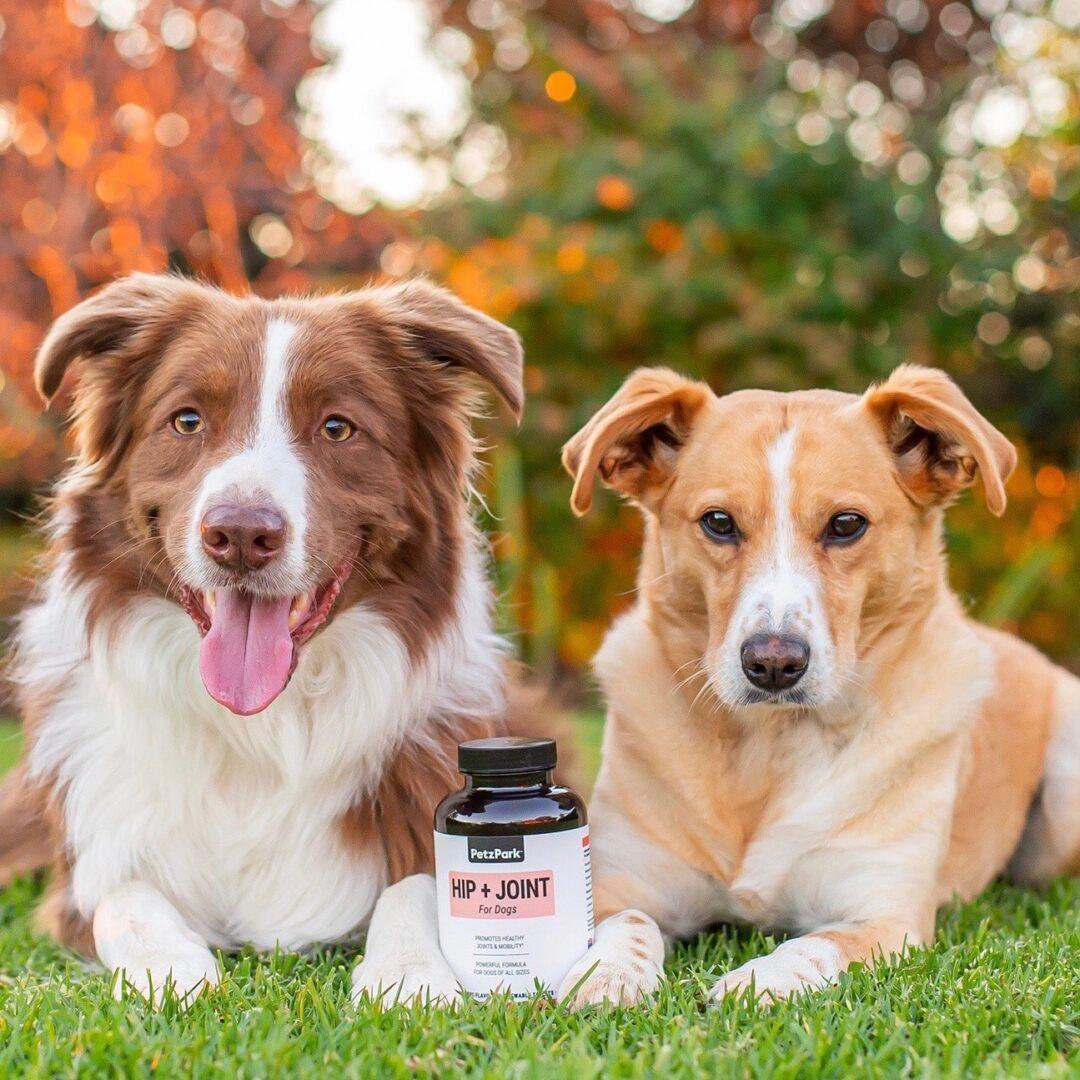 Petz Park - Dog Supplements