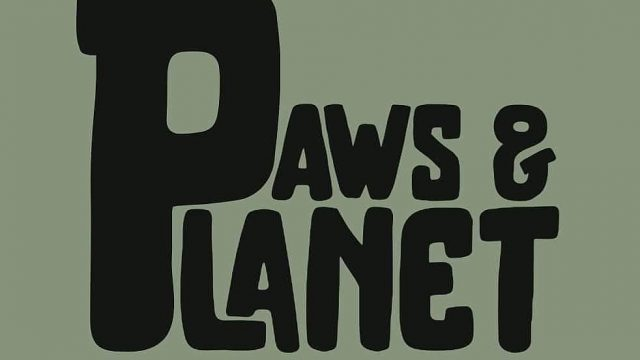 Paws & Planet I The Eco-Friendly Dog Store