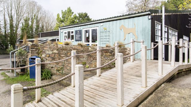 Natural Cornish Pet Shop