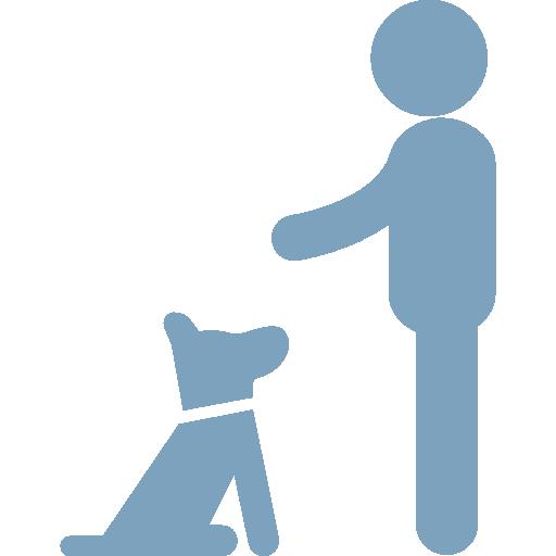 Dog/Puppy Training
